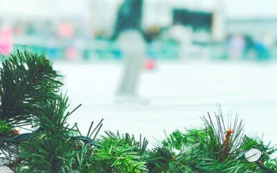 De snelste schaatstijden bij de mannen